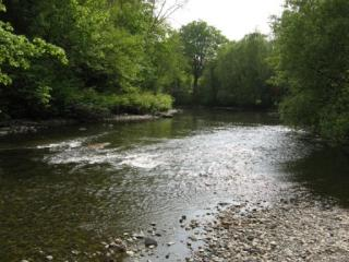 The River Ifron