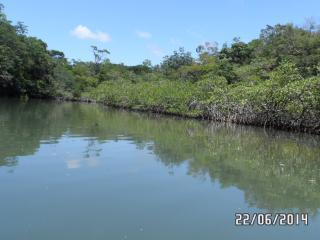 En las proximidades, Rio Dulce