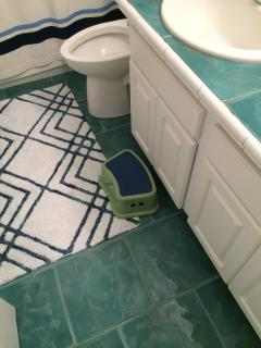 Guest bathroom has beautiful sea colored ceramic tile on floors and counters