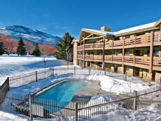 Best Location for Your Ski or Summer Vacation!, Park City