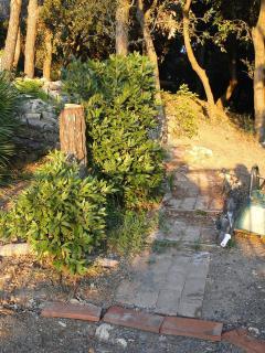 Un parte del giardino