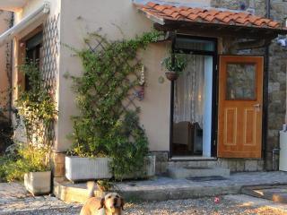 Casa immersa nel verde, Castiglioncello
