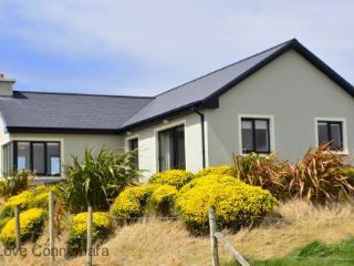 93221 - Cottage 103 - Claddagh, Cleggan