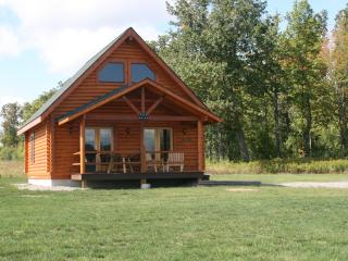 Honeoye Deluxe Cabin by Seneca Lake at Cobtree, Genebra