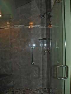 New Master Bathroom Shower with vaulted ceiling and light