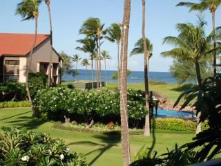 Fabulous Oceanfront/Ocean view condo, Wifi, A/C, Parking, Pool, Private Lanai!l