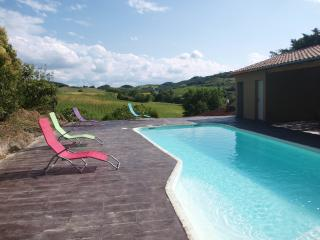 Close to Mirepoix, in the South of France,enjoy, Plavilla