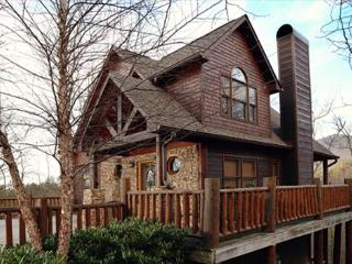 Not too big or small, but just right with our Beary Cozy three bedroom cabin, Sevierville