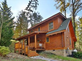 Dog Days a 2BR Cabin with bedside Jacuzzi and private bath in Master Suite, Sevierville