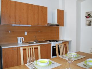 ☆2spacious BDRM Wenceslas Sq. Prague with garden