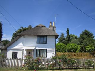 Rose Cottage - Chocolate Box Thatched Cottage, Hastings