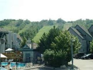 Mountainside 2-story Studio Loft 740 sq.ft. POOL, HOT TUB, TENNIS. Kitchen, VIEW, Blue Mountains