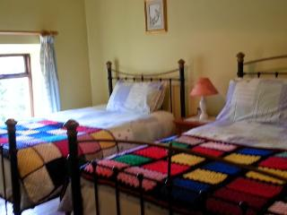 our second bedroom with original wrought iron bed frames and floorboards.