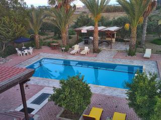 Cyprus at its best - Pentayia residence