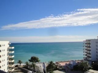 ROSMARIN II, Miami Platja