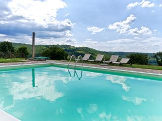 Sangiovese country house with pool in Chianti area