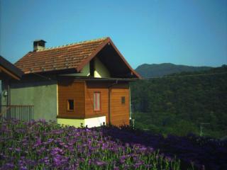 Un'oasi naturale di pace e relax tra monti e laghi, Verbania