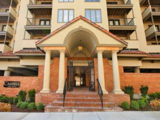 Great 1 BD in Downtown(CAMBRIA511)