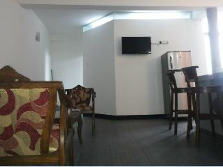 FULLY FURNISHED 1 AC BEDROOM APARTMENT IN DEHIWALA, Colombo