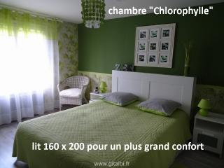 CHAMBRES D'HOTES DES TAILLADES