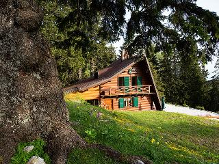 Chalet Alpinka 2 for 4+2, ski resort Krvavec Slovenia