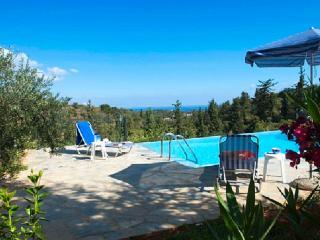 Villa Eleni, Douliana