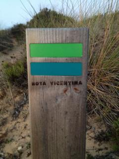 Amazing coastal walks through the stunning Vicentina National Park