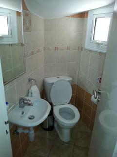 Guest wc in ground floor