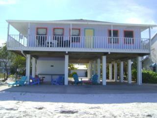 Dolphins Playground- 604 South Bay Blvd, Anna Maria