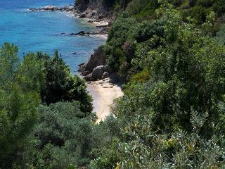 Beachfront Greek Villa in Skiathos with Semi-Private Sandy Beach