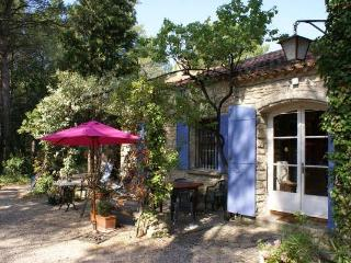La Tres Grande Peyriere - Stone Villa With Pool - large wooded property - 3 bedrooms -