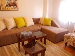 Holiday Apartment Rental in Skopje