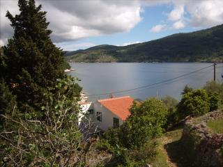 Apartment Vanilla in Vela Luka30 m from the beach