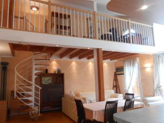 Luxirious 3 bedroomed near Disneyland Paris, Chessy
