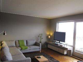 Quai de Rome - Apartment, Liegi