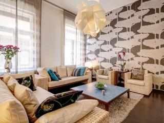 115m2 luxury 2 bedroom ap. with A/C and wifi CITY1, Budapest