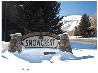 Beautiful Vacation Condo - One Block from the Shuttle Stop (25124), Park City