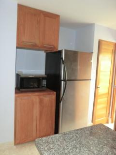 Kitchen pantry, fridge and microwave