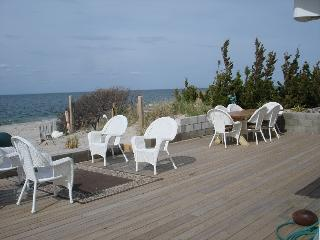 Beach House All Year, Wine tasting North Fork near Hampton Sleeps 12 The Diana, Wading River