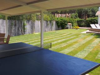 View Towards House from Table Tennis Table
