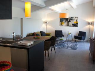 Luxury Furnished Apartments Aix en Pce with GARDEN, Meyreuil