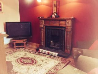 Sitting room , large tv with channels, book case and open fire