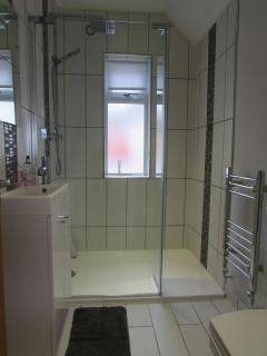 Downstairs shower/wet room with wc and basin