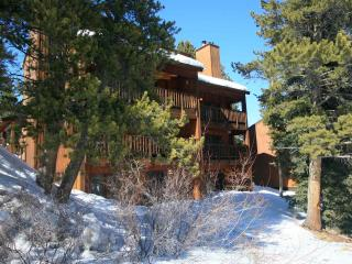 Tyra Summit- Four O'Clock - 1 bed condo Ski in/out
