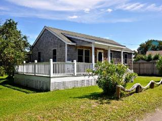 NP26: Northern Pond, Ocracoke
