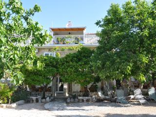 Villa Kaktus Orebic