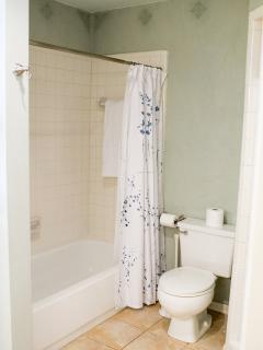 Spacious master bath has tub/shower combo and stand in shower