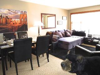 Aspens, prime ski-in, ski-out, 2 bdrm with bright, quiet mountain view & BBQ, Whistler