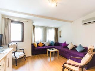 One Bedroom Apt Near Taksim Square - 235