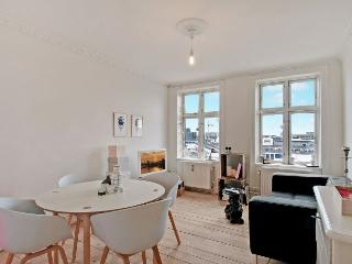 Nice Copenhagen apartment close to the Central Station